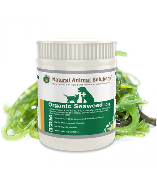 Natural Animal Solutions Organic Seaweed For Dogs And Cats 300gm