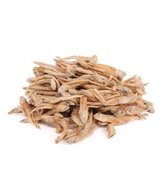 Kazoo Dried Fish Treats For Cats 100gm
