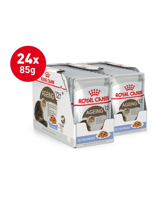 Royal Canin Ageing In Jelly 12+ Years Mature/Senior Pouches Wet Cat Food 85g x 24