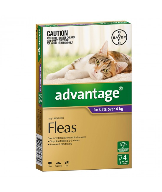 Advantage For Cats Over 4kg 4 pack