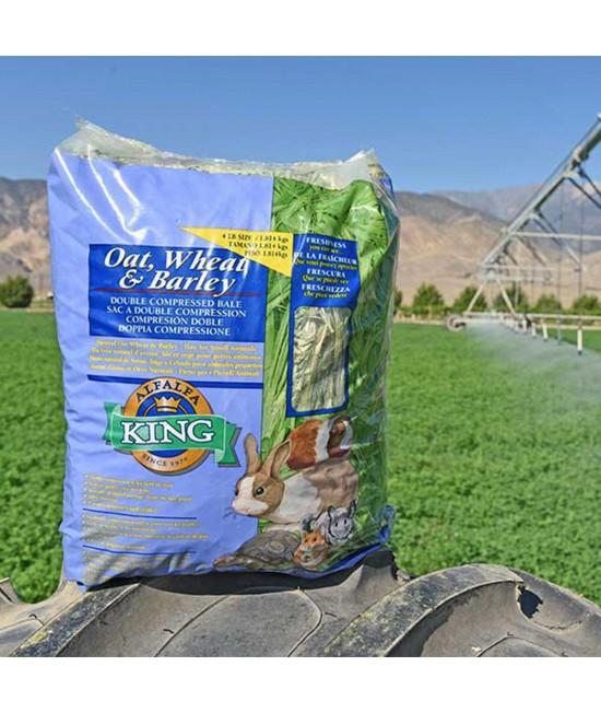Alfalfa King Oat Wheat & Barley Hay For Small Animals 454gm