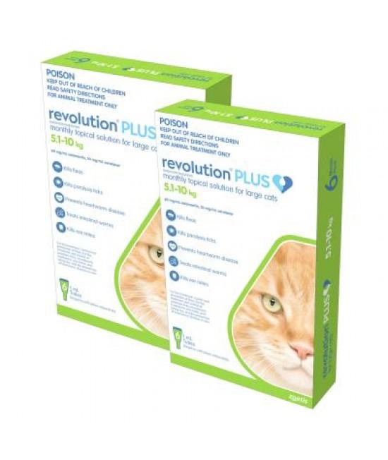 Revolution Plus For Large Cats 5-10kg 12 Pack